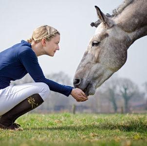 Know How Pferdefütterung