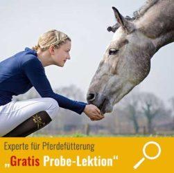 kursbild-probelektion-pferdefuetterungsexperte
